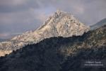 El rey de la Baja Montaña
