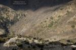 Valle del río Dílar